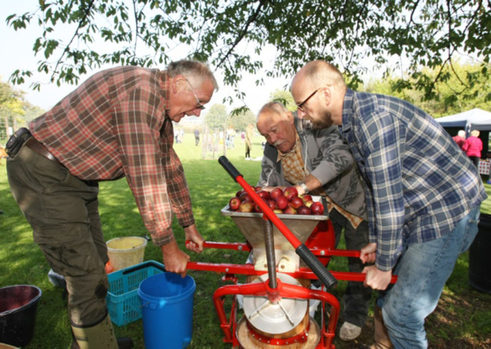 Apple Day 2015 Apple Pressing 1