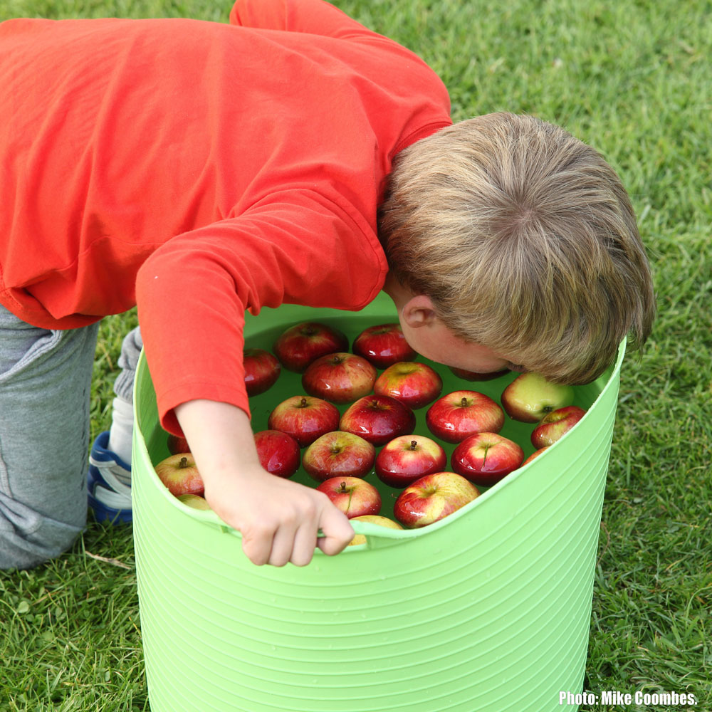 Apple Day 2015 Childrens Games 3